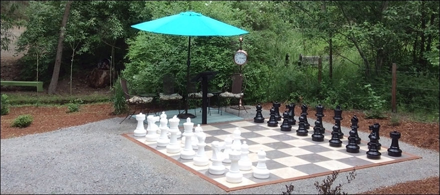Chess Anyone?